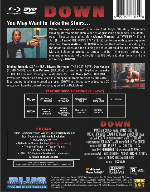 english Half Girlfriend movie download blu-ray movies